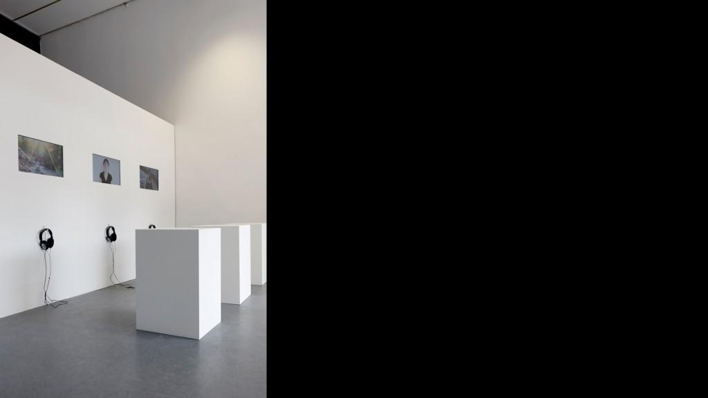 Franz Christoph Pfannkuch, Landlust, Ausstellungsansicht, 2011, 01