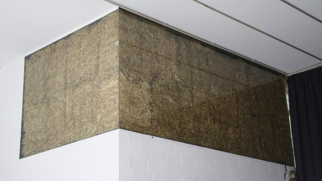 Franz Christoph Pfannkuch, Stroh zu Gold spinnen, Installation, 2011, 01
