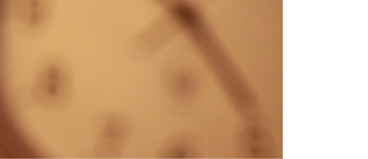 """5 Fiona Nolte, """"come to me"""", Screenshot/Video, 2012"""