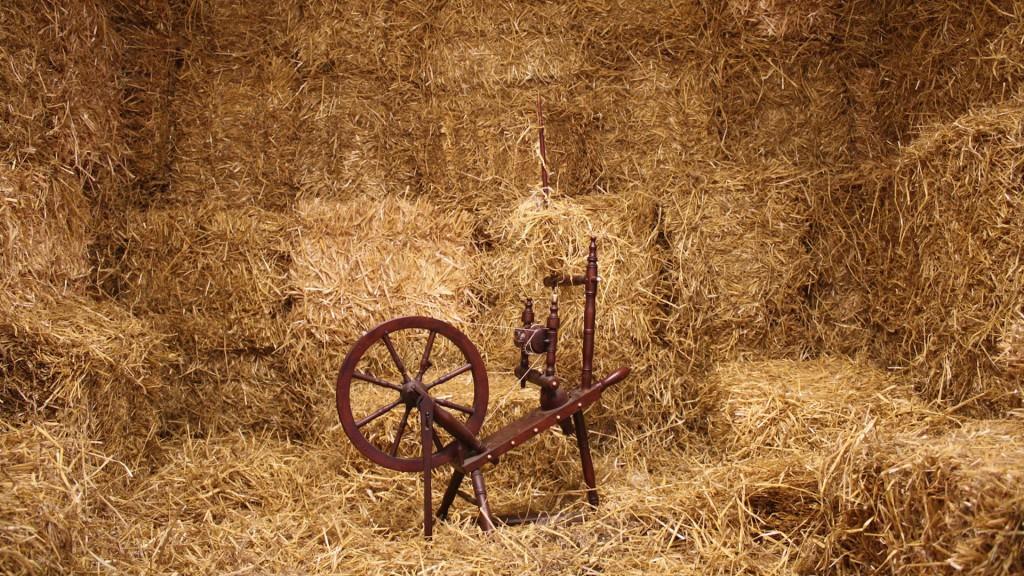 Franz Christoph Pfannkuch, Stroh zu Gold spinnen, Installation, 2011, 02