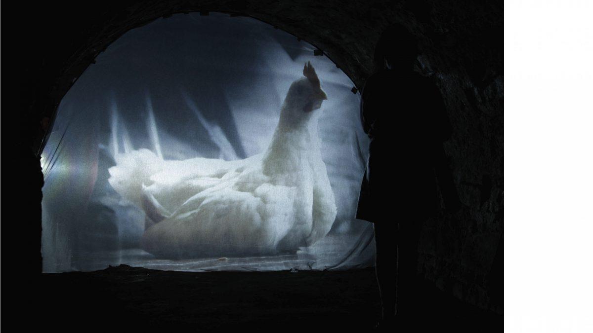 10 Paula Mierzowsky, Animagic Intruder, Video, 2013